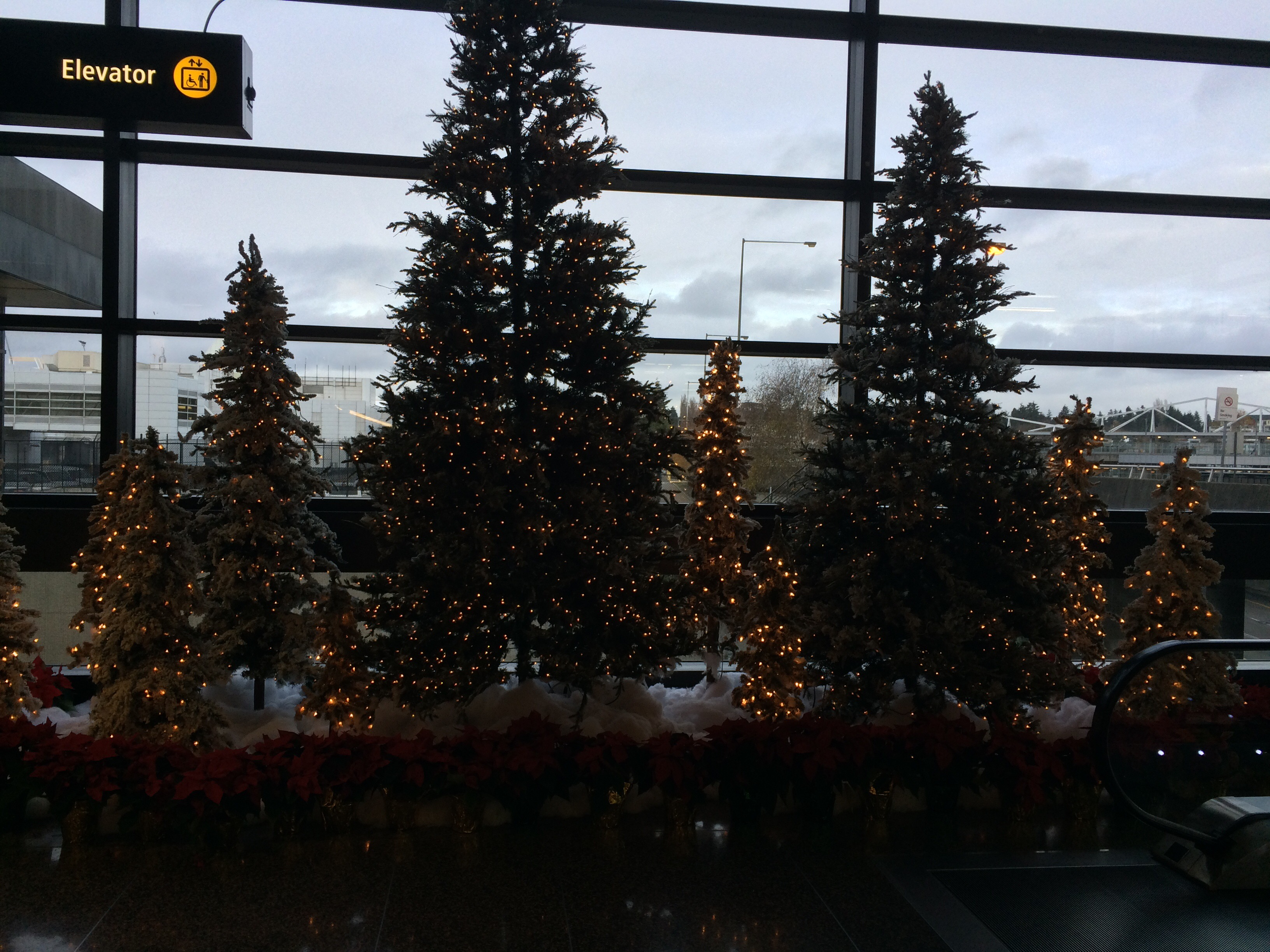 Seatac Airport Christmas Trees A Very Atheist Christmas